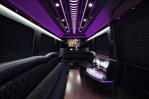 12 Passenger Party Buses Bellevue